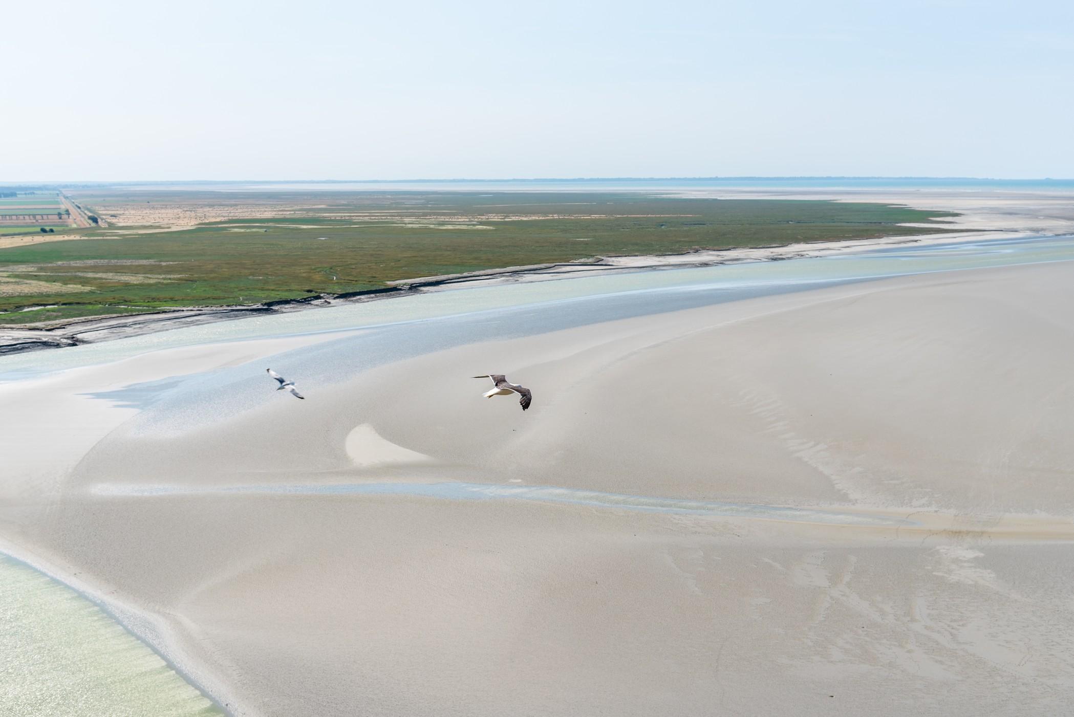 Profiter de cet été pour aller en Normandie.